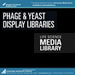Phage & Yeast Display Libraries
